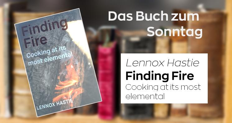 Das Buch zum Sonntag – Finding Fire
